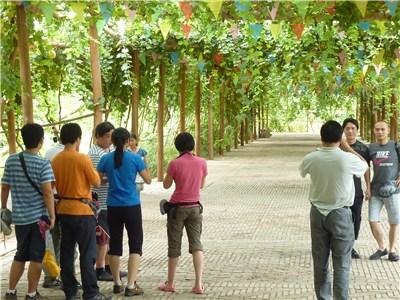 中国人の観光客たち