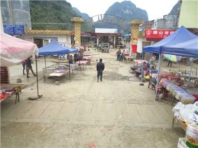 農村の市場