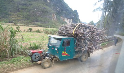 焚き木を積む